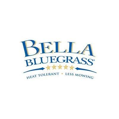 Bella Bluegrass : Garden & Outdoor