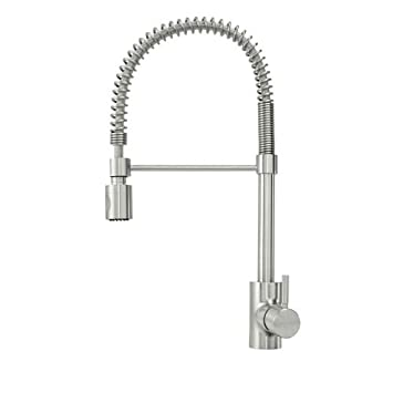 Amazon.com: Danze DH450188 Foodie Pre-Rinse High-Arc Kitchen Faucet ...