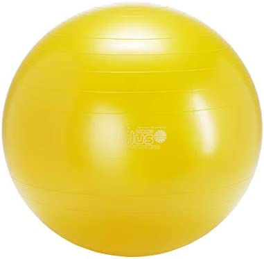 Gymnic Classic Plus Burst-Resistant Exercise Ball