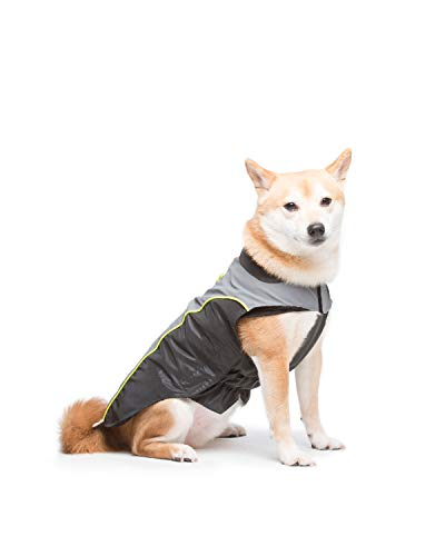 Dog Gone Smart Meteor Nanobreaker Jacket, Black & Grey W/Yellow Piping, 10