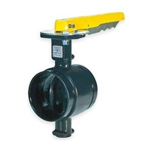Butterfly Valve, Grooved, 8 In, Iron by Gruvlok