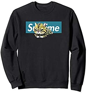 Adorable Cat , Cute Sublime Cat  in a blue box Sweatshirt T-shirt | Size S - 5XL