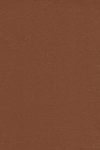 Galaxy Heavyweight Vinyl Tablecloth, 52X52 Square, Terra [Kitchen]