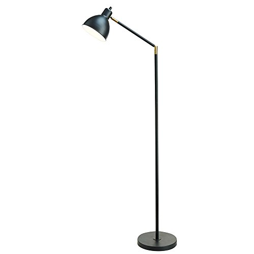 (Catalina Lighting 20093-001 Modern Adjustable Metal Floor Lamp with Antique Brass Accents, 54.5