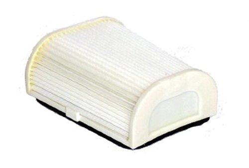Hiflofiltro HFA4702 Premium OE Replacement Air Filter