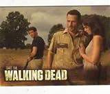 Cryptozoic Walking Dead Season 2 - 80 Card Base Set