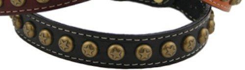 "Auburn Leather Pet Dog Collar Heirloom Star Collection Black 22""-24"""