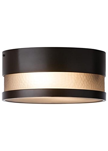 LBL Lighting ODF827SMBZLEDW Moon Dance Out Fls SM bzLED Bronze Smoke 13.20 by LBL Lighting