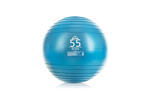 2200lbs Static Strength Exercise Stability Ball, 55 cm
