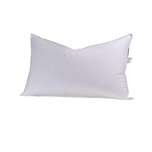 900 fill pillow - 2