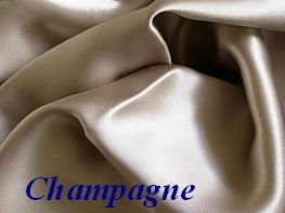 King Champagne 100% Mulberry Silk Pillowcase for Hair and Fa