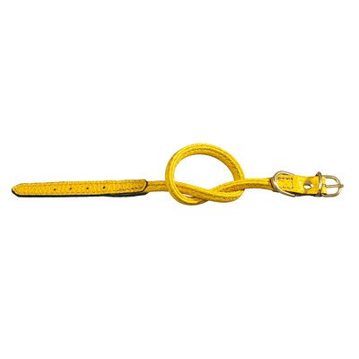 "Fashion Tubular Leather Dog Collar Size: (12.125"" L), Color: Yellow"