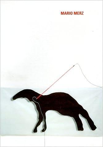 66e5cece7c9 Mario Merz  Casa Fibonacci by Vincente Todoli (1999-02-06) Paperback – 1853
