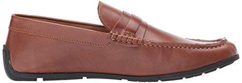Tommy Hilfiger Mens Wiltons Shoe, Brown, 9 Medium US