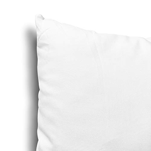 Edow Throw Pillow Inserts, Set of 2 Lightweight Down Alternative Polyester Pillow, Couch Cushion, Sham Stuffer, Machine Washable. (White, 18x18)