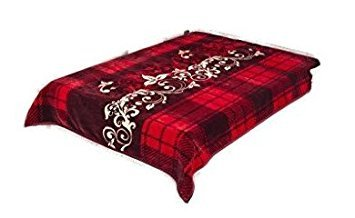 "94.5""Hx78.7""W,Two-ply Softest Blanket, Plush Warm Blanket..."