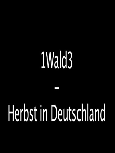 1Wald3 - Herbst in ()