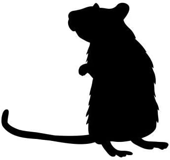 RAT Vinyl Decal Sticker Car Window Wall Bumper Mouse Animal Home Decor Hamster