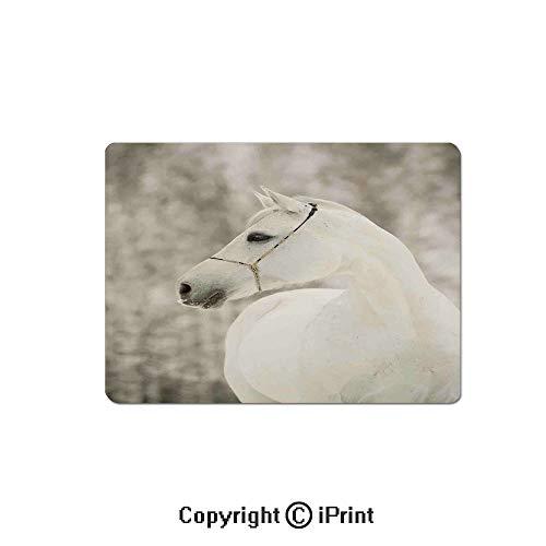 Anti-Slip Mouse Pad,White Horse Head Face Portrait Winter Equestrian Purity Power Grace Symbol Decorative Mouse Mat,Non-Slip Rubber Base Mousepad,7.9x9.5 inch,Eggshell