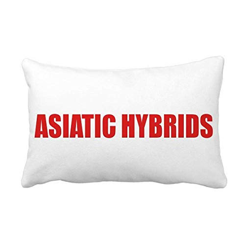 Asiatic Hybrids Flower Red Plant Throw Pillow Lumbar Insert Cushion Cover Home Sofa