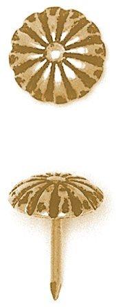 Upholstery Nail