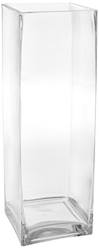 WGV Clear Square Block Glass Vase, 4 by 12-Inch (Discount Clear Vases)