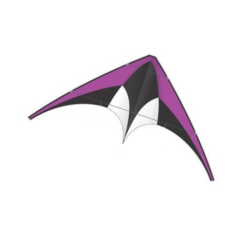 X-Kites DC Sport 60'' Wide Purple Dual Control Nylon Kite