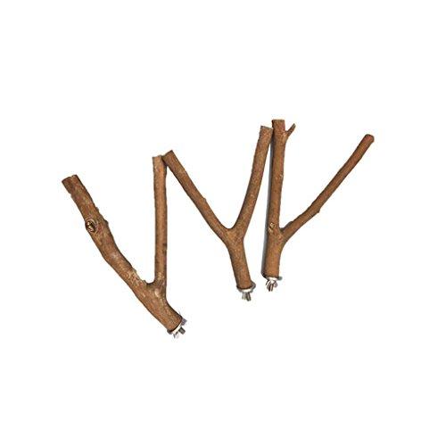perches perroquet Hamster pour bois stand brut 1pc branche broche cage rack en W4qwz0ZaS