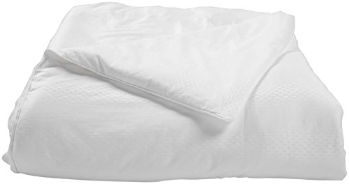 Natural Comfort Ultra Deluxe 100-Percent Natural Mulberry Silk Filled Dobby White Comforter for All Seasons, Queen