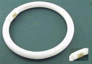 Bulb for JANA-LITE FC22W DAYLIGHT, FC22W/D, FCL22T5/D LAM...