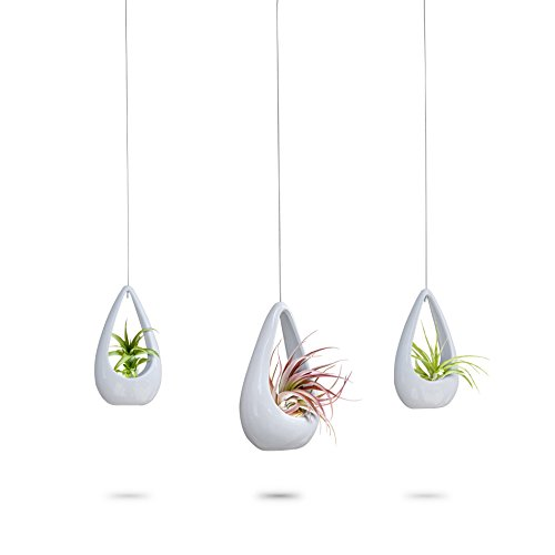 - 23 Bees | Hanging Air Plant Holder | White Hanger Ceramic Planter | Small Floating Succulent Pots Container | Cactus Holders with Metal Wire | 3 Pack