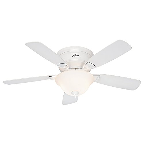 Hunter Fan 52062 Low Profile Plus Ceiling Fan with Five Oak Blades and Cased Glass Light Kit, 48-Inch, White