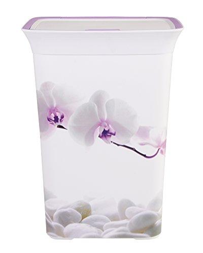 Wäschetruhe Wäschekorb Wäschepuff mit Belüftung Moda Orchidee 60 Liter mit Deckel Wäschesammler