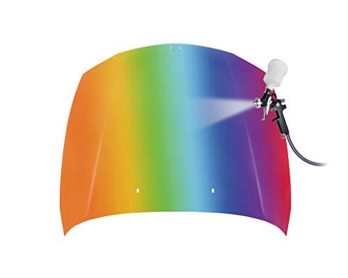 Bonnet Steel Choice Paint:
