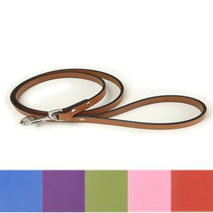 Town Dog Lead Color: Pink, Size: 0.75'' x 72''