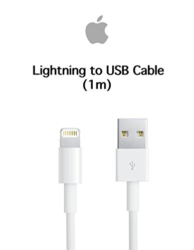 Review Apple Lightning to USB