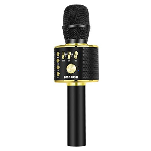 Bonaok Wireless Bluetooth Karaoke