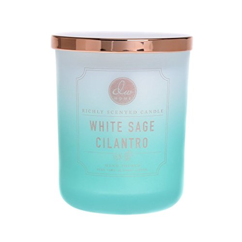 DW Home Decoware Richly Scented Candle Large Double wick Signature Ombre Collection D - White Sage Cilantro