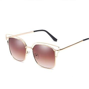 GGSSYY Gafas de Sol Mujer Hombre Lentes de Cristal clásico ...
