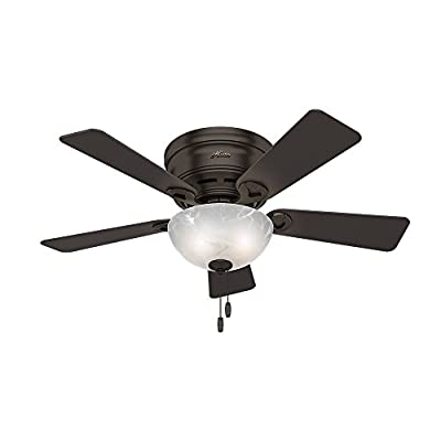 "Hunter 52137 Hunter Haskell Ceiling Fan with Light, 42"", Premier Bronze"