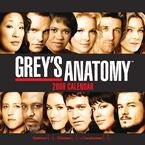 Grey's Anatomy 2009 Wall Calendar