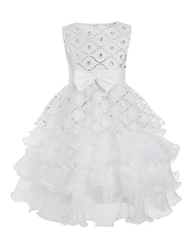 Aibeiboutique Little Girls Dress Princess Party Lace Flowers Wedding Dresses Tutu Dress ()