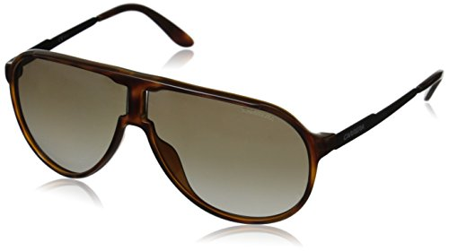 Carrera New Champion Aviator Sunglasses, Havana Black & Brown Gradient, 62 - Sunglasses Virtual