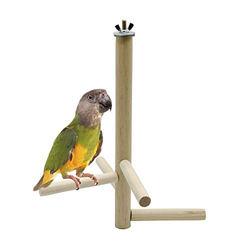 PIVBY Bird Perch Parrot cage Stands Play Toys Natural Wood Birdcage Accessories for Conure Parakeet Budgie Cockatiels Lovebirds