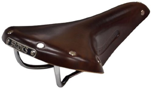 Brooks Saddles Men's Team Pro Bike Saddle, Antique Brown/Tubular Rivets Brooks Leather Saddle