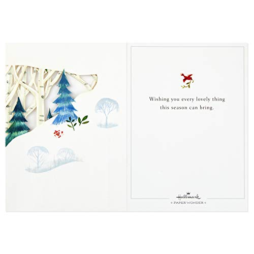 Hallmark Paper Wonder Pop Up Holiday Card (Woodland Animals Pop Up) Photo #3