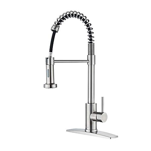 FORIOUS Spring Kitchen Sink Faucet