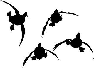 k Hunting Decal - Four Ducks Duck Flying in The Wild - Flying Ducks Decal 5010SW ()