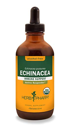 Herb Pharm Certified Organic Alcohol-Free Echinacea Liquid Glycerite for Immune Support – 4 Ounce
