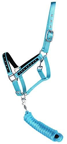 - PRORIDER Nylon Horse Halter SS Hardware Padded Lead Rope Tack 606162SB